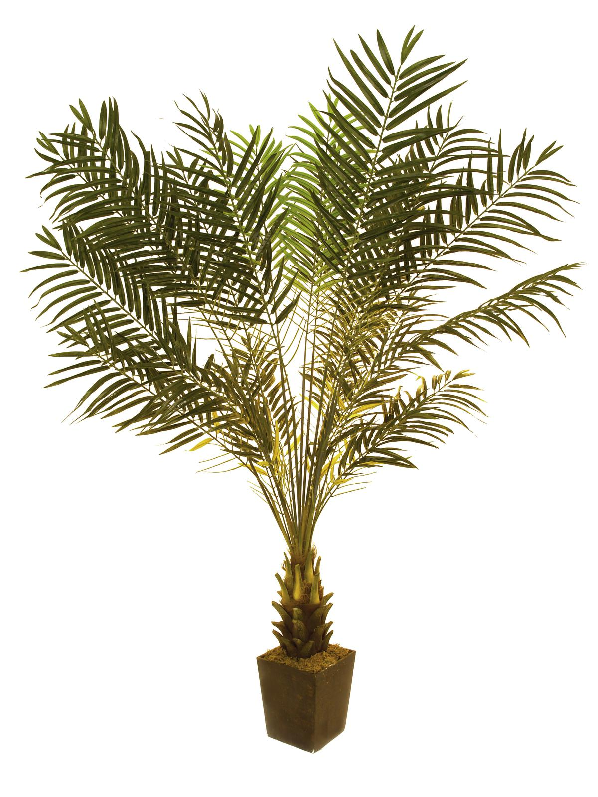 EUROPALMS pianta artificiale Cycas, 223cm