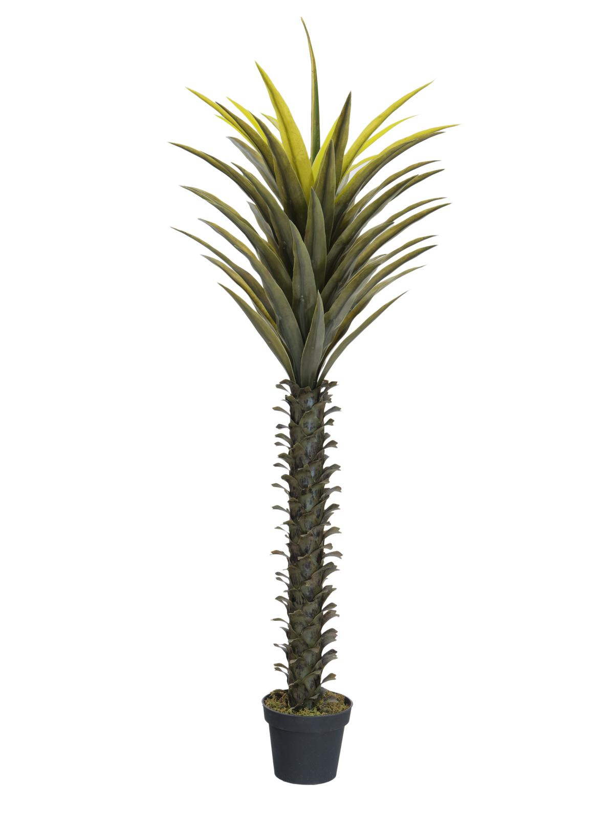 EUROPALMS pianta artificialeYu