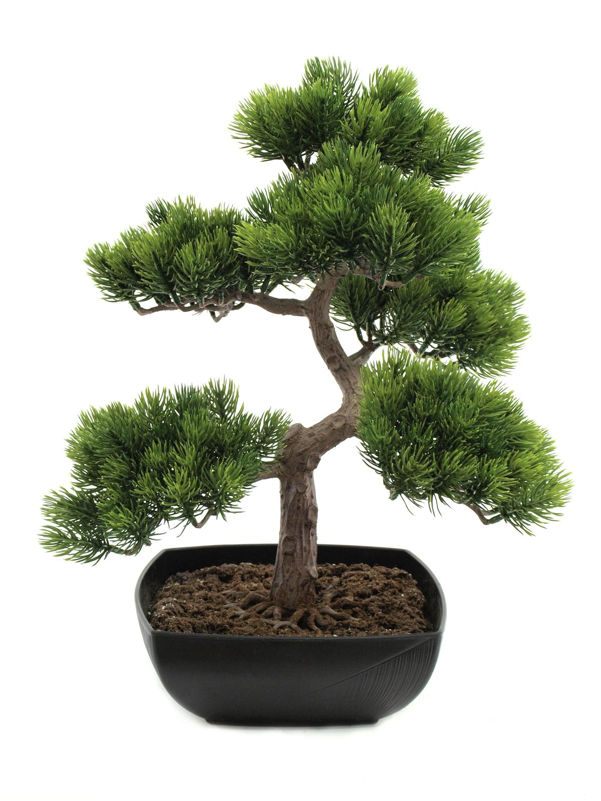 EUROPALMS Bonsai-Pinie, Kunstpflanze, 50cm