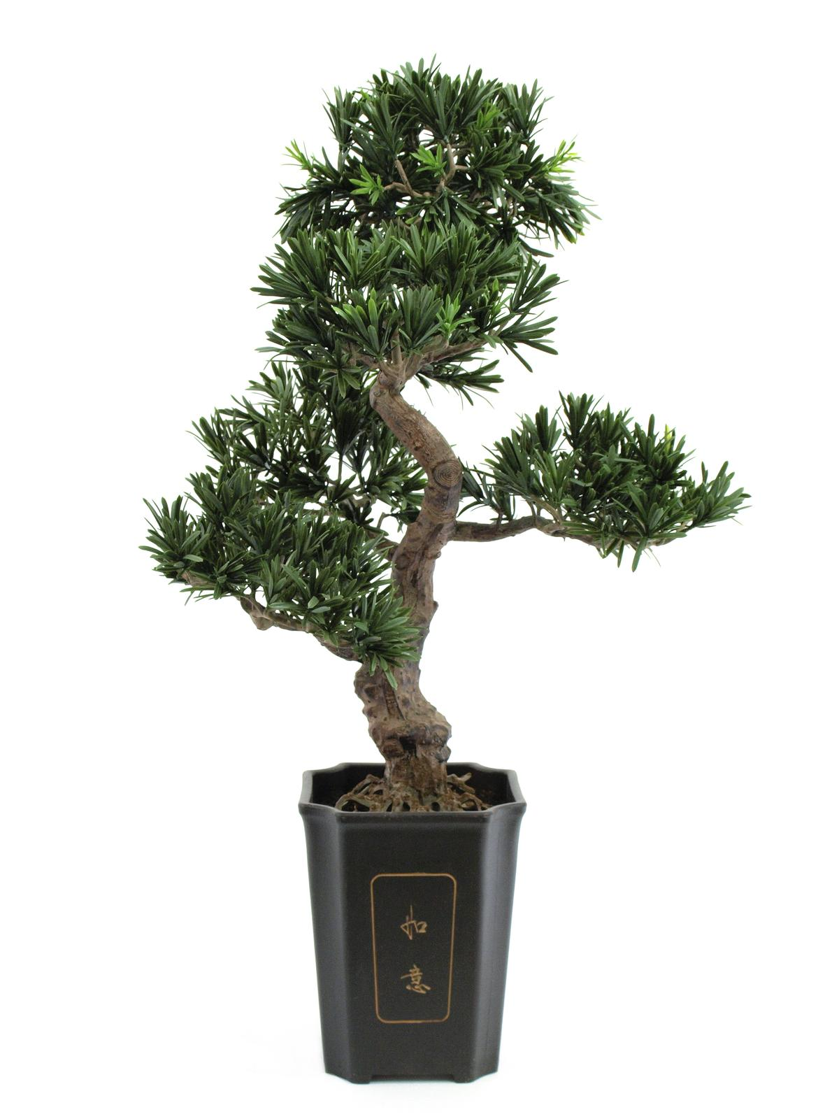 EUROPALMS Bonsai podocarpus pianta artificiale, 80cm