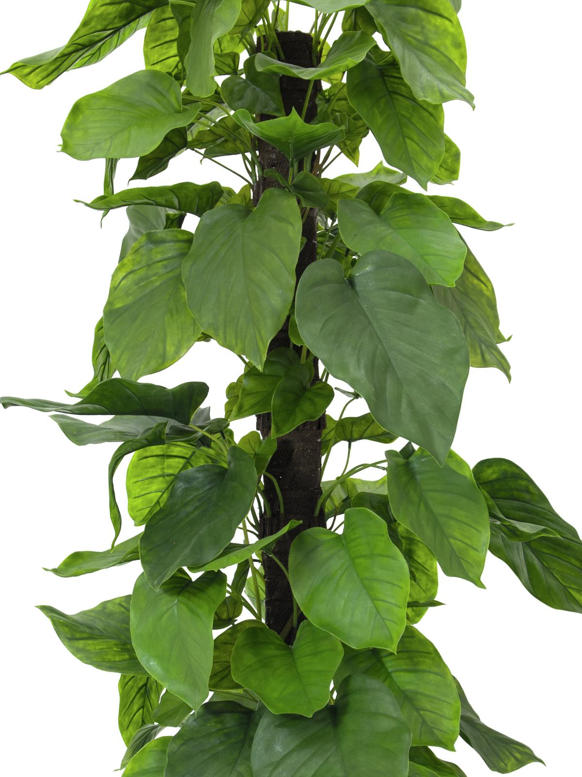 Pianta Artificiale In Plastica Pothos 180 Cm Europalms