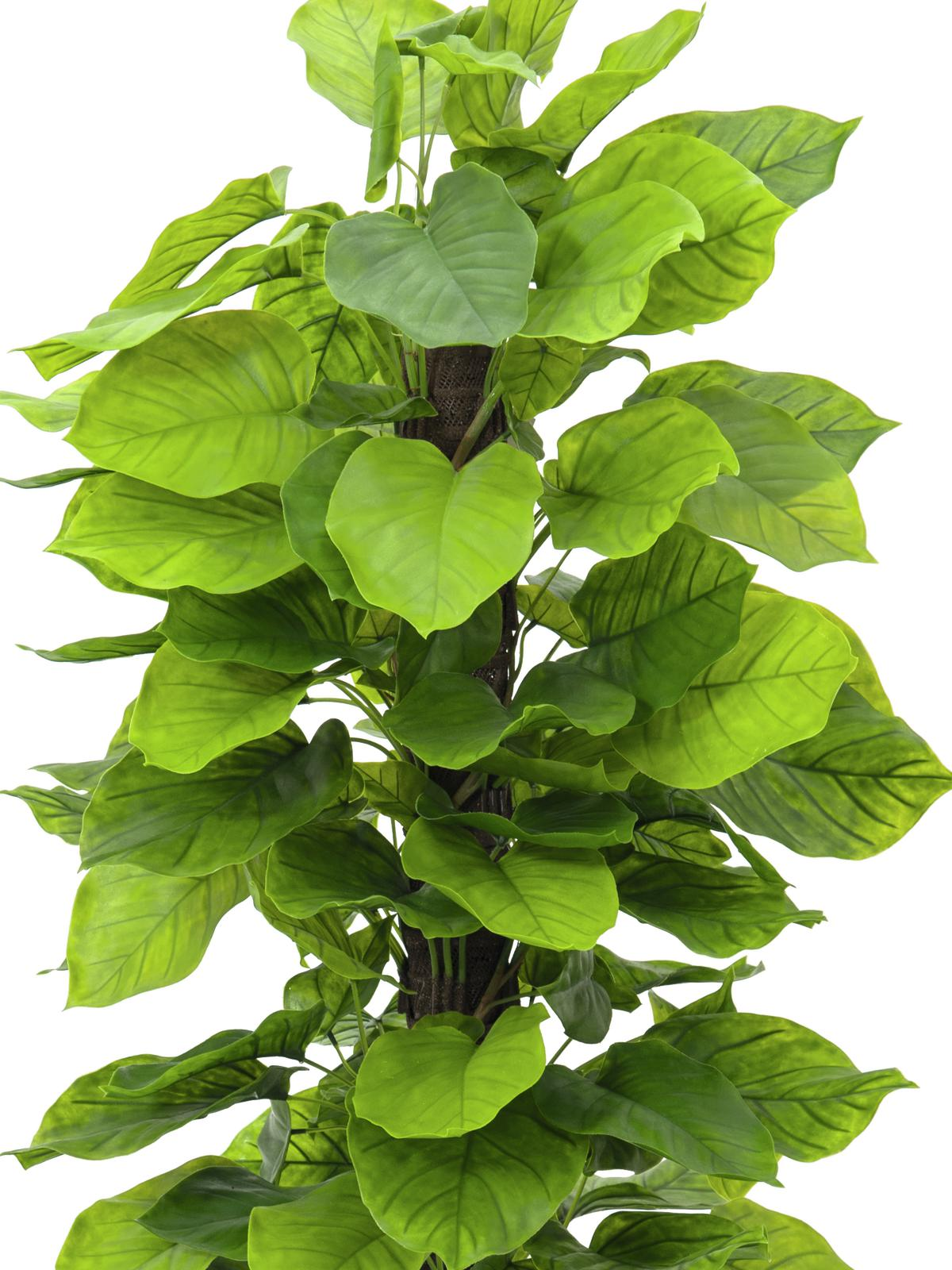 Pianta Artificiale In Plastica Pothos 125 Cm Europalms