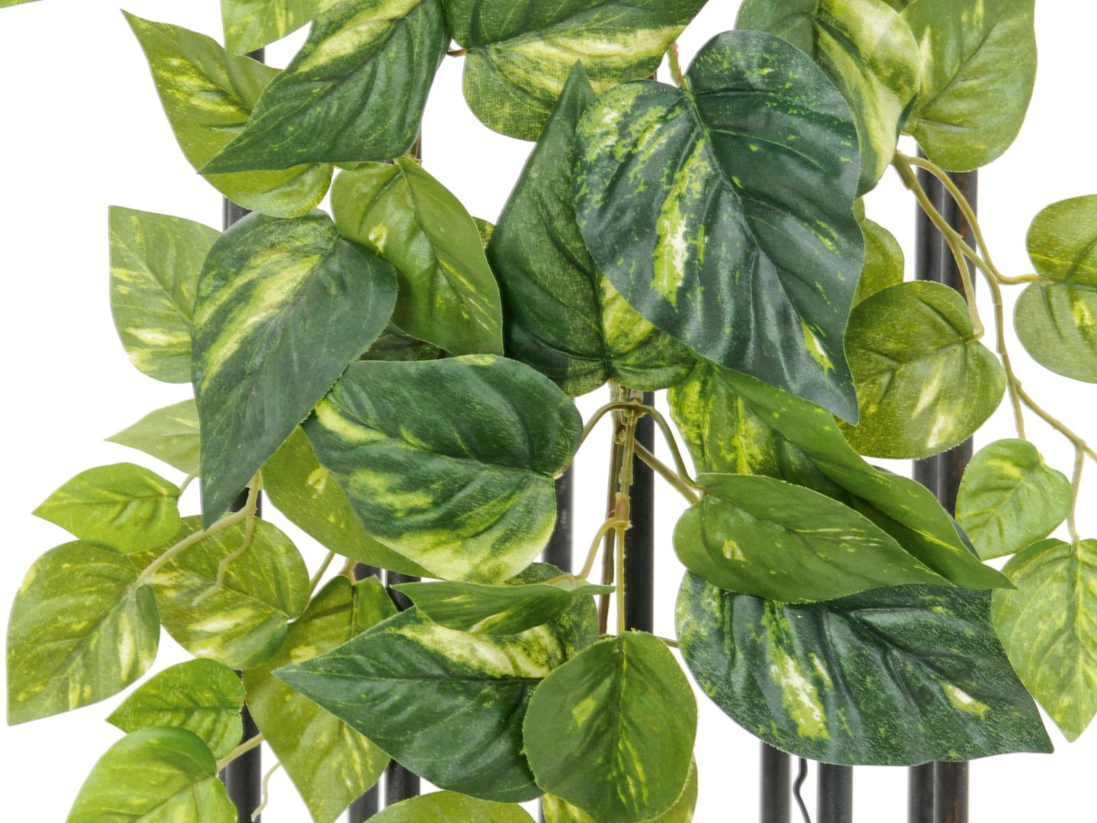 EUROPALMS Pothos bush garland,