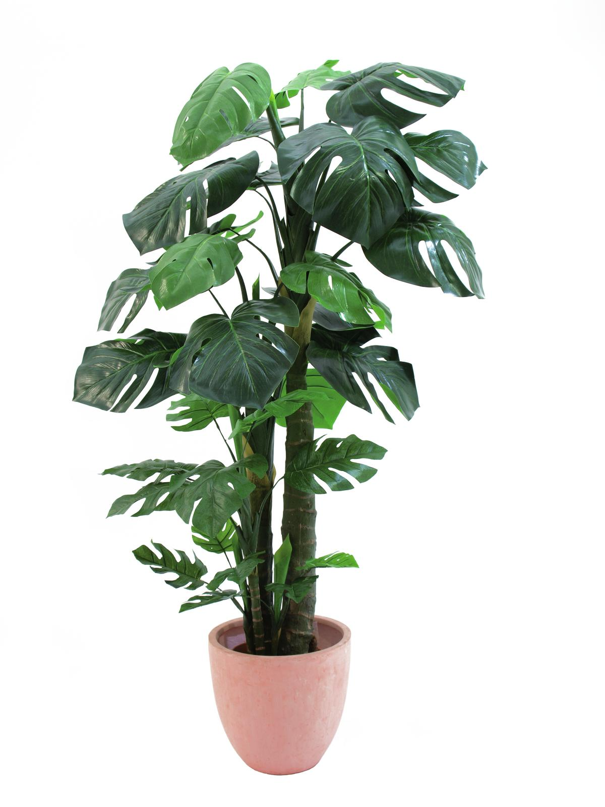 EUROPALMS Split filodendro, piante artificiali, 160 cm