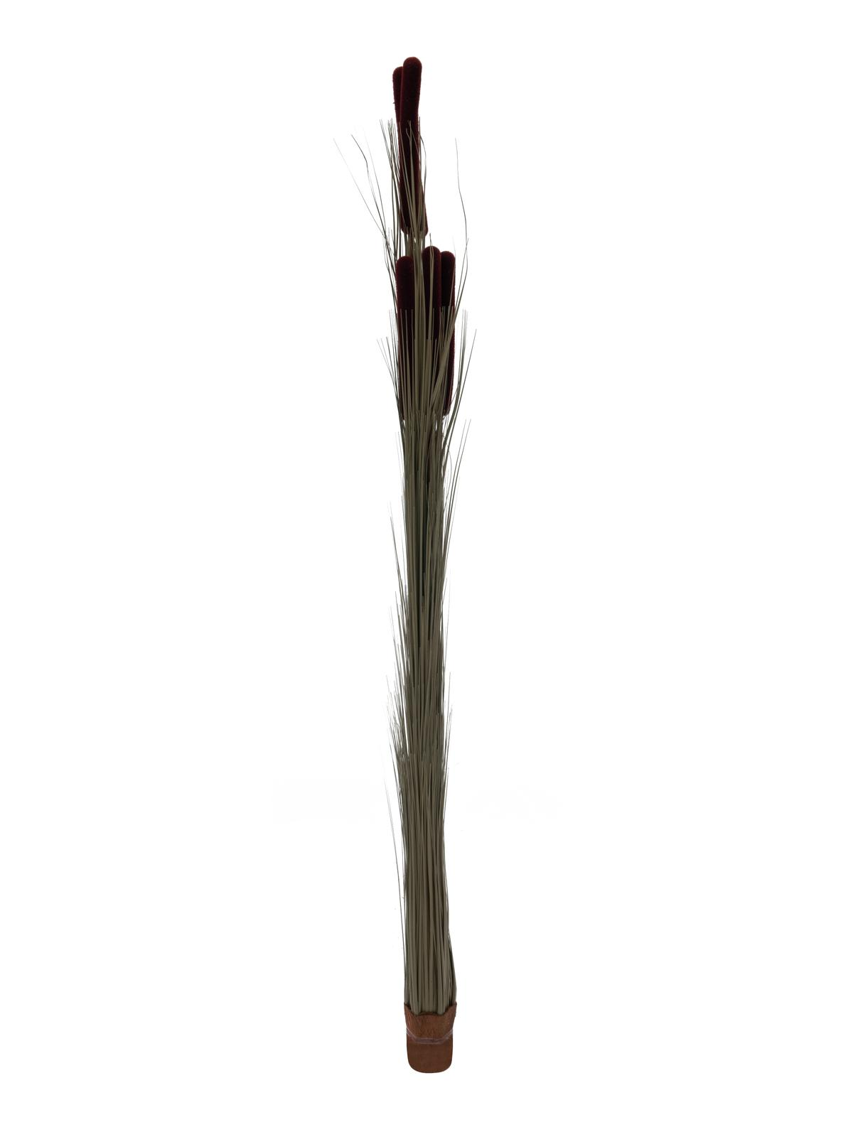EUROPALMS Canna di erba tife, marrone scuro, 152 cm