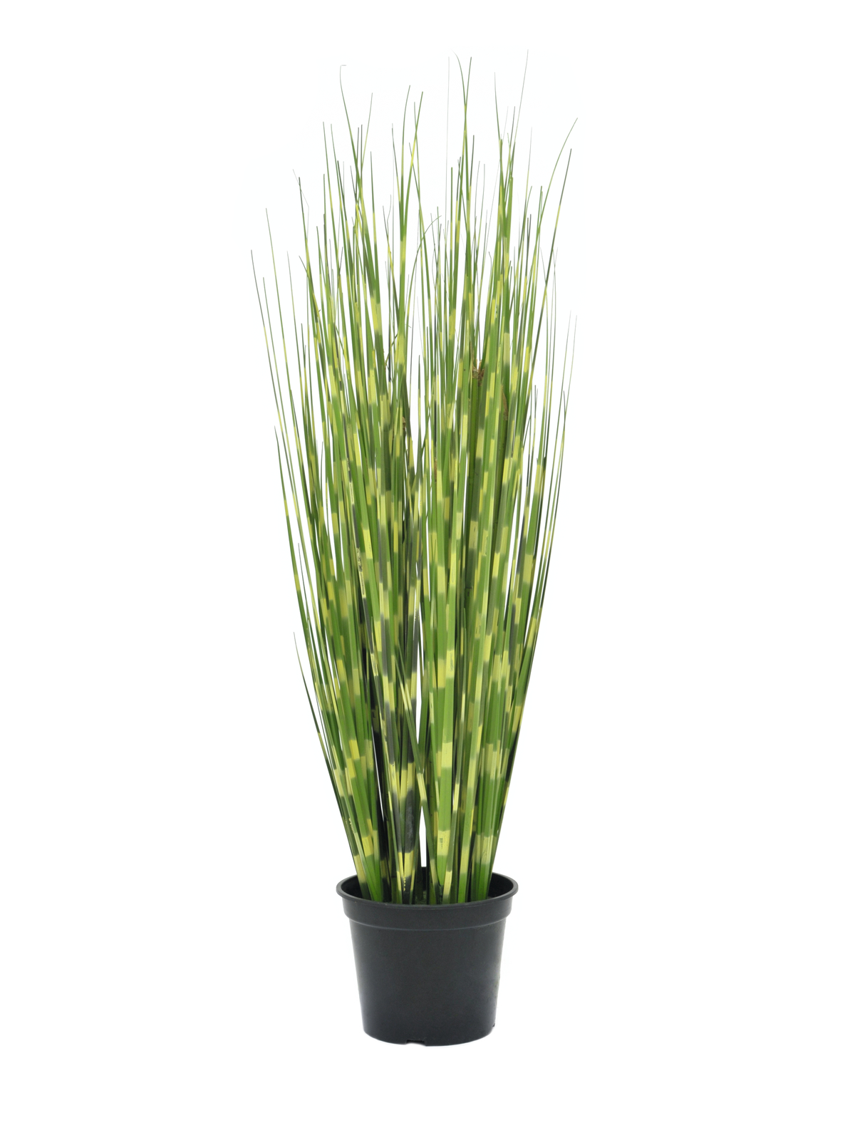 EUROPALMS Zebra erba artificiale, 90cm