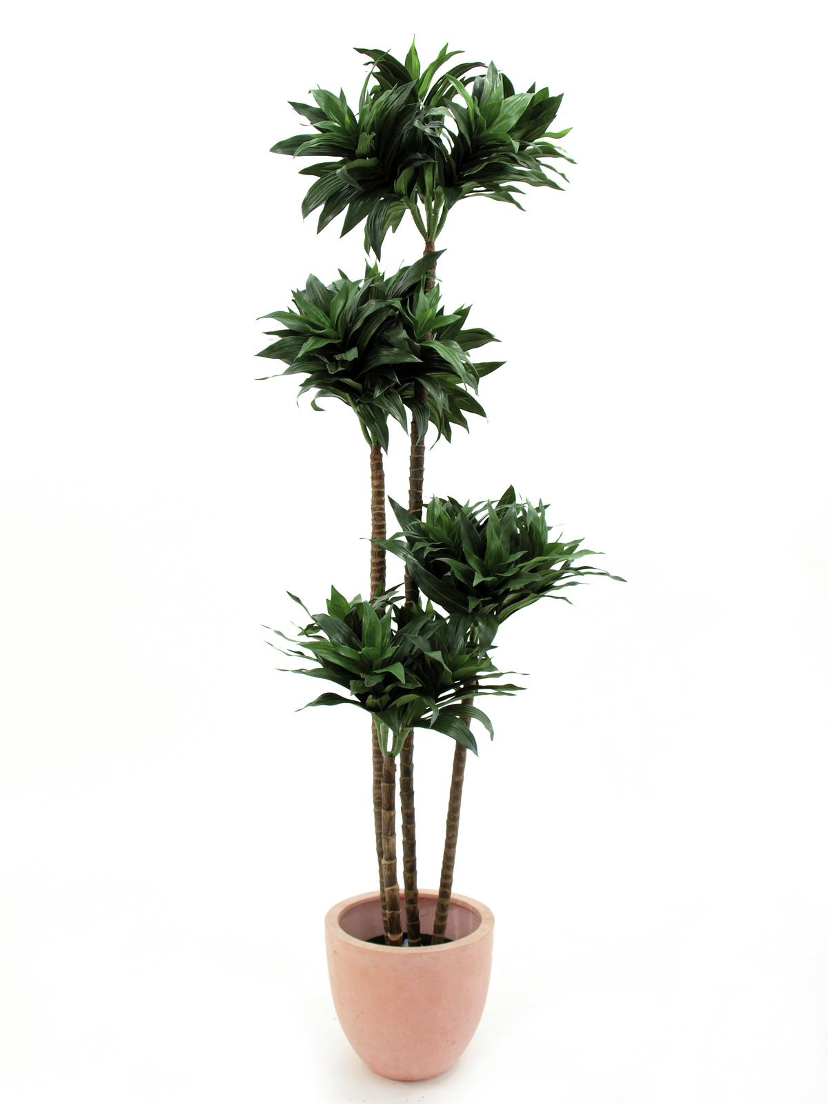 EUROPALMS pianta artificiale D