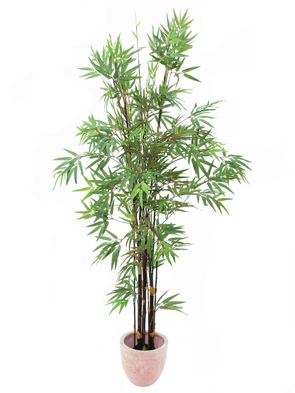 EUROPALMS pianta artificiale Albero bambù scuro, 210cm