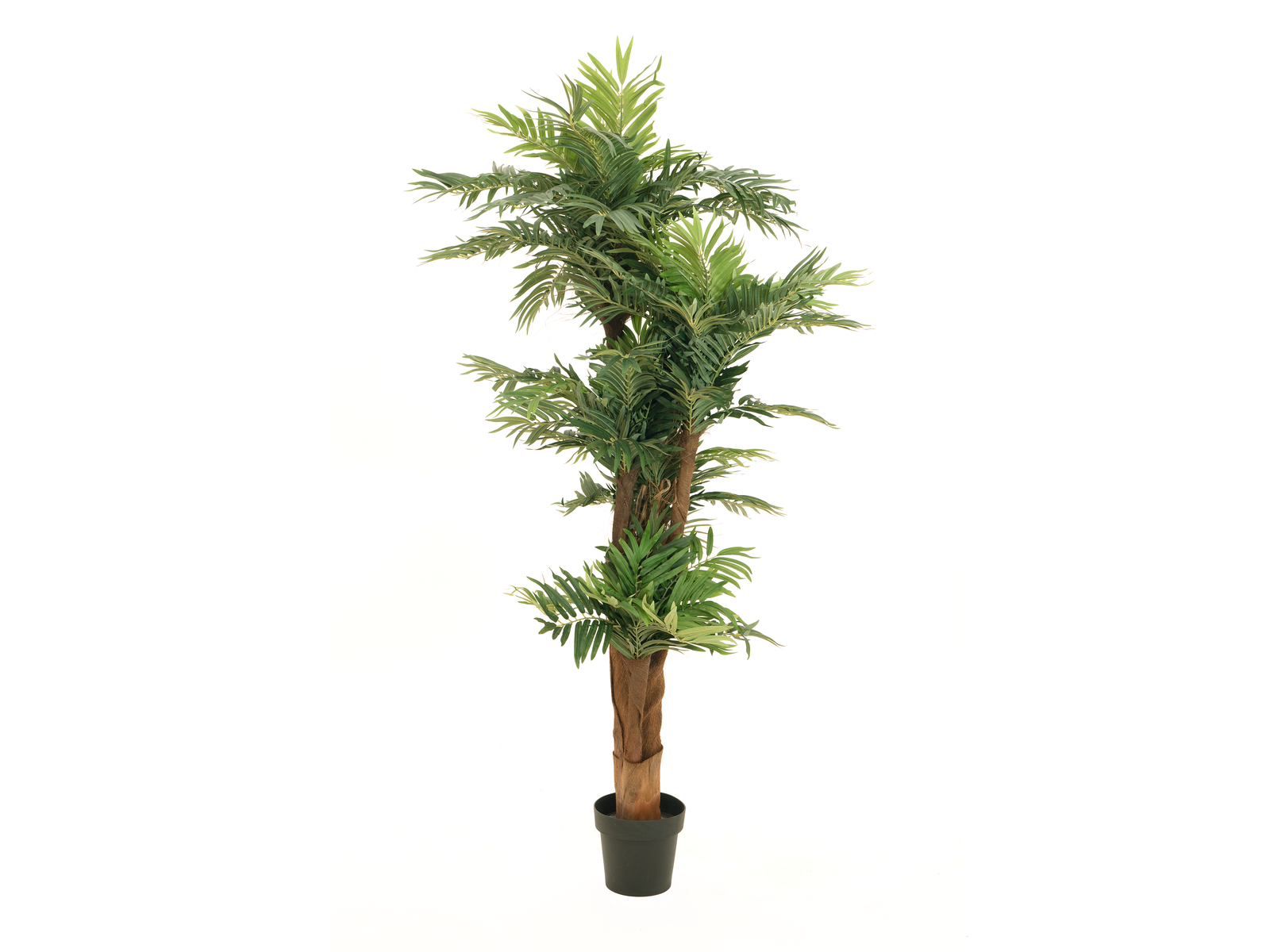 EUROPALMS la palma Areca, piante artificiali, 170cm