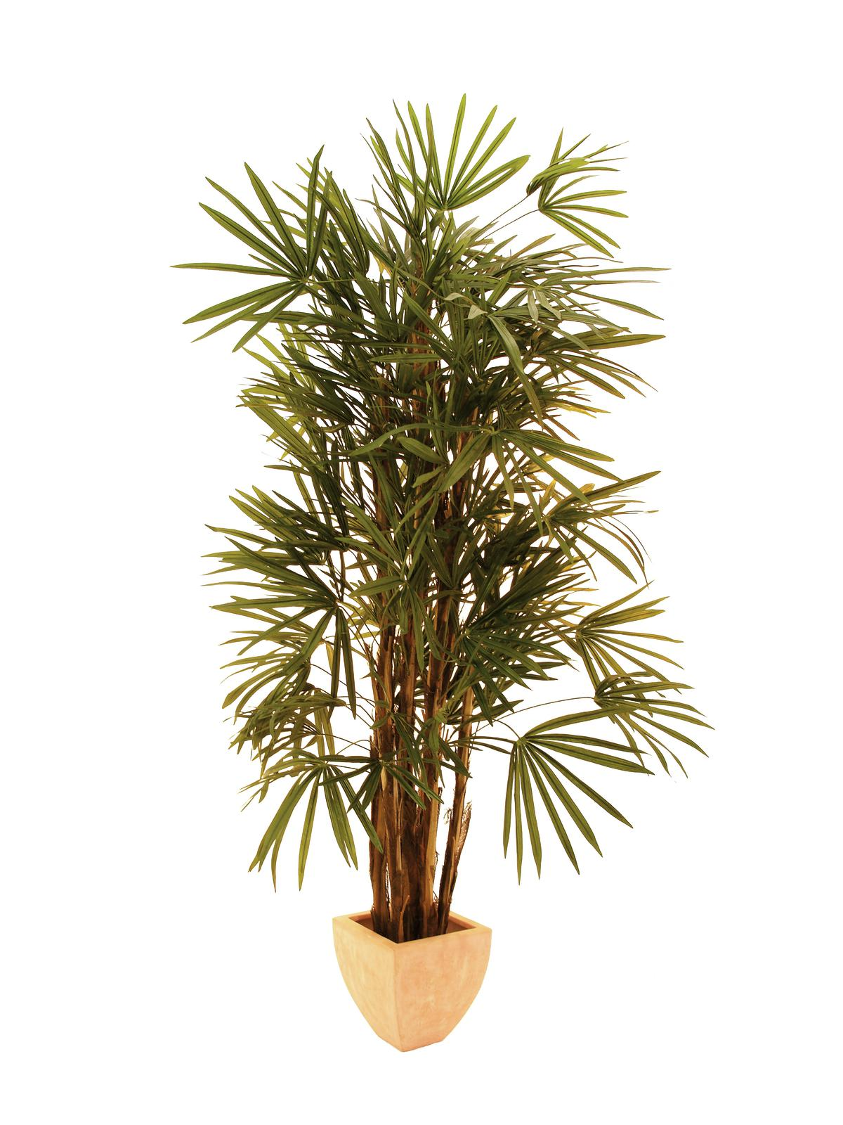 EUROPALMS pianta artificiale S