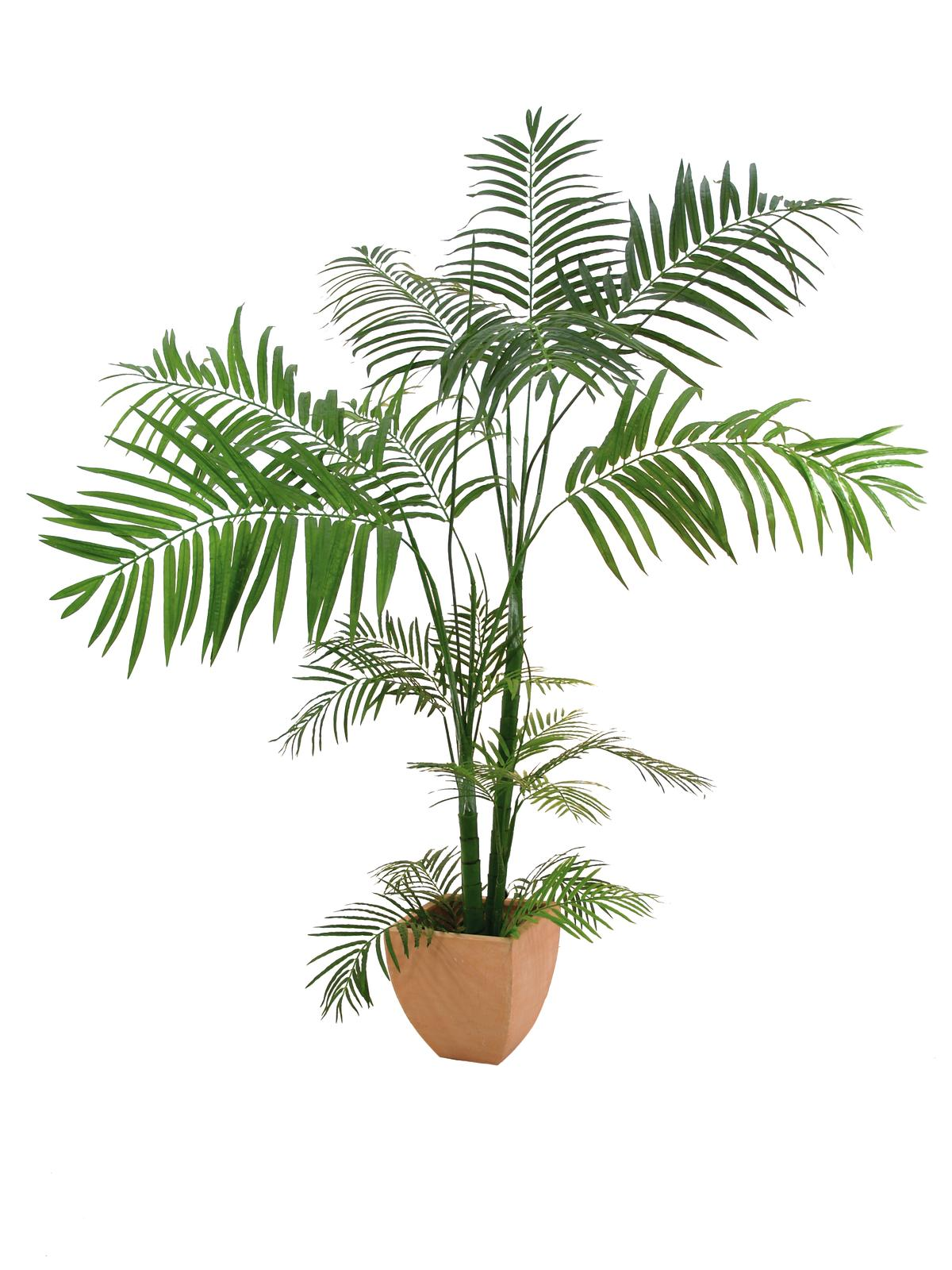 EUROPALMS pianta artificiale palma di Areca 170cm