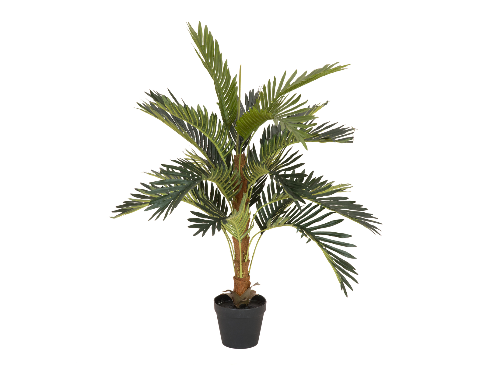 EUROPALMS plant, artificial Coconut palm tree, 90cm