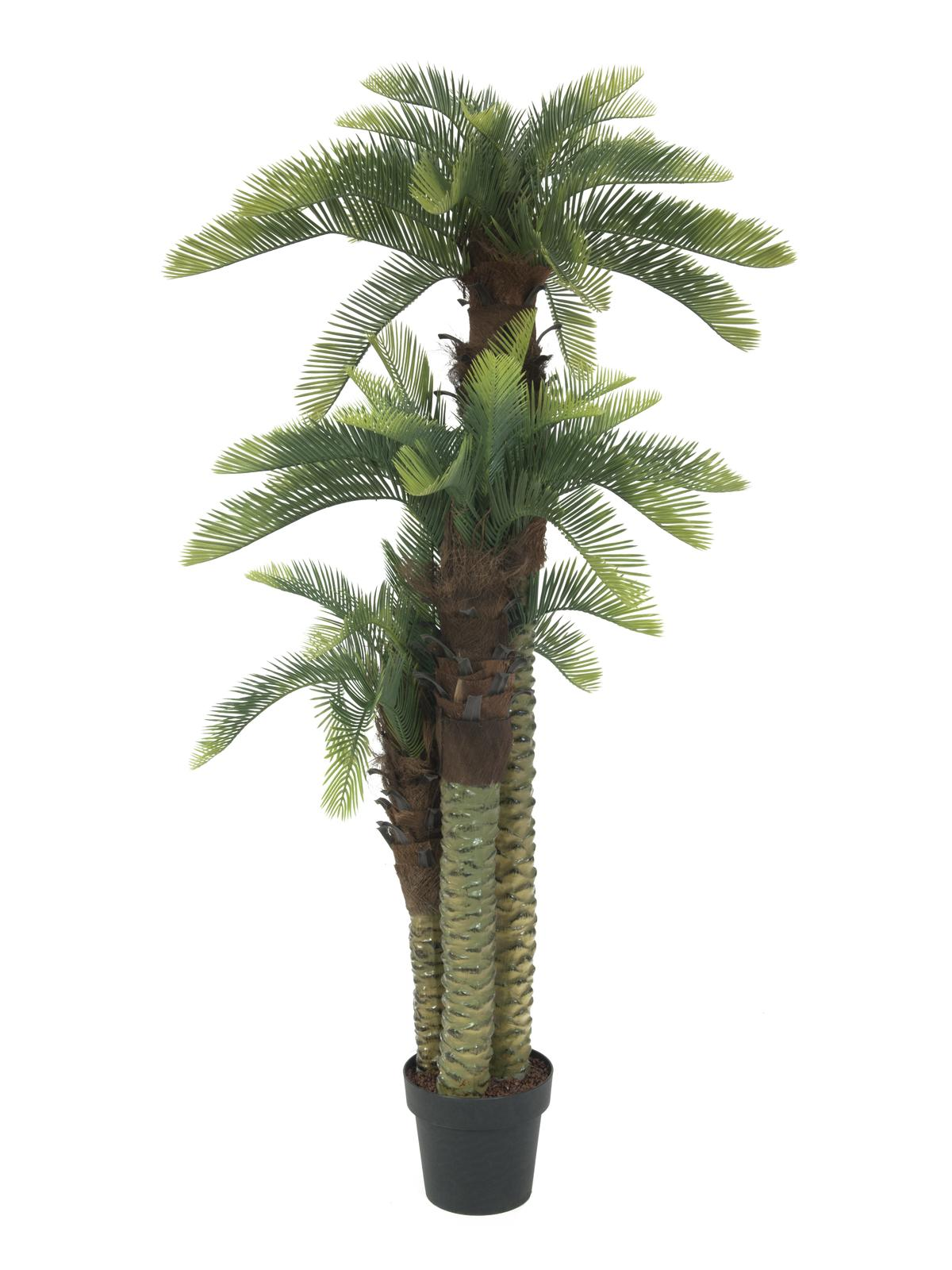 EUROPALMS pianta artificiale Cycas palma, 150cm