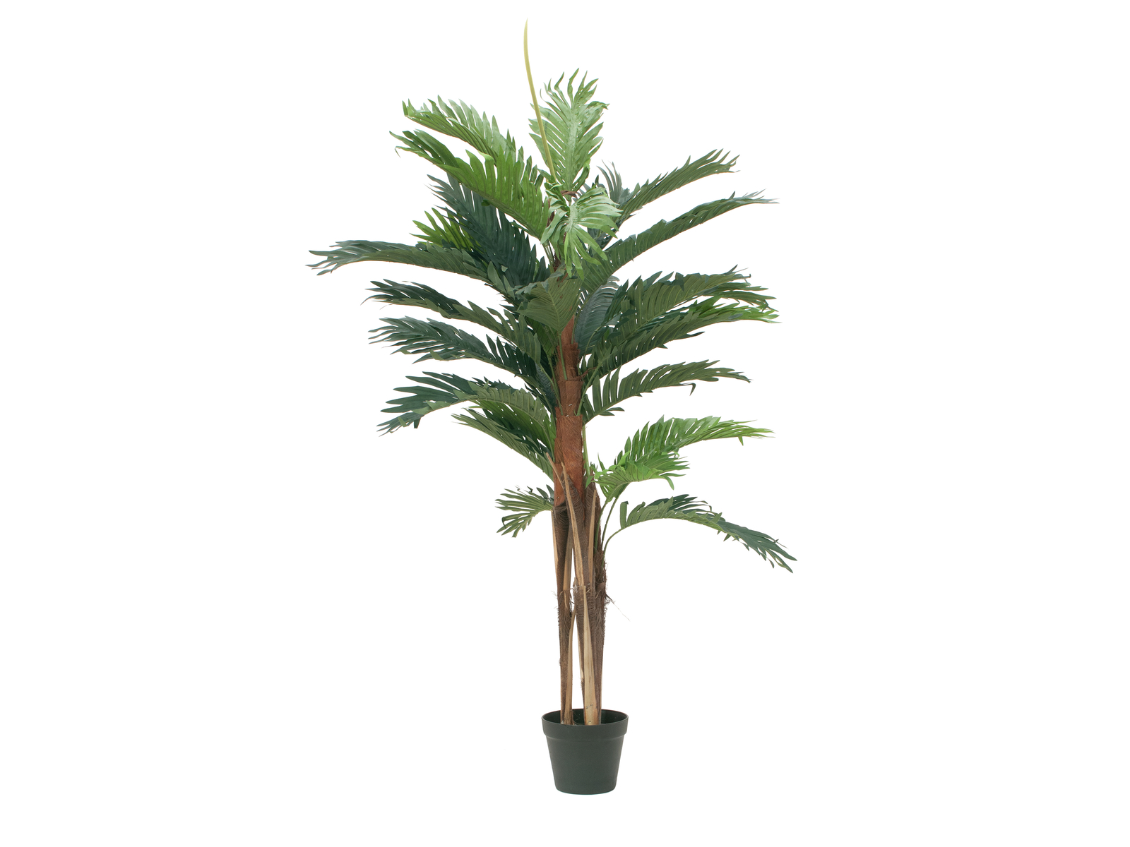 EUROPALMS Kentia di palme, piante artificiali, 120cm