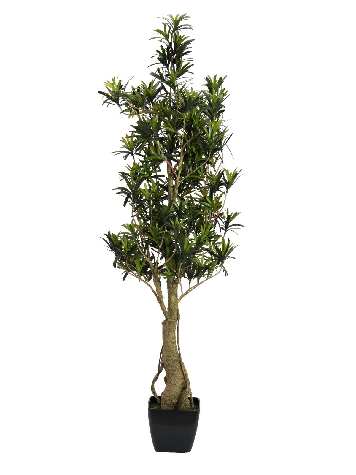 Plant Artificial Tree Podocarpus 115 cm EUROPALMS